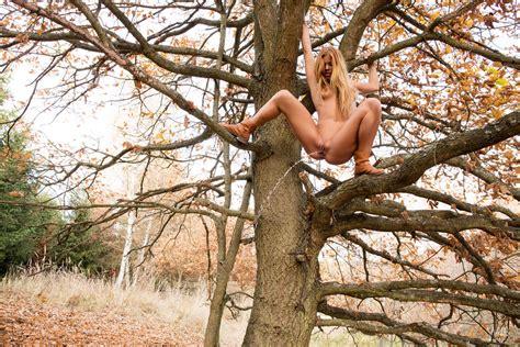 treehouse lesbians jpg 1200x800